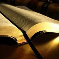 Библиология 2012/2013
